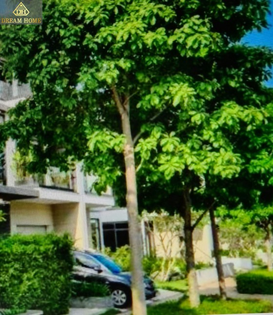 Bán nhà đường 24 Him Lam 6A Bình Hưng, Bình Chánh